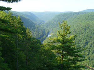 Pennsylvania Grand Canyon